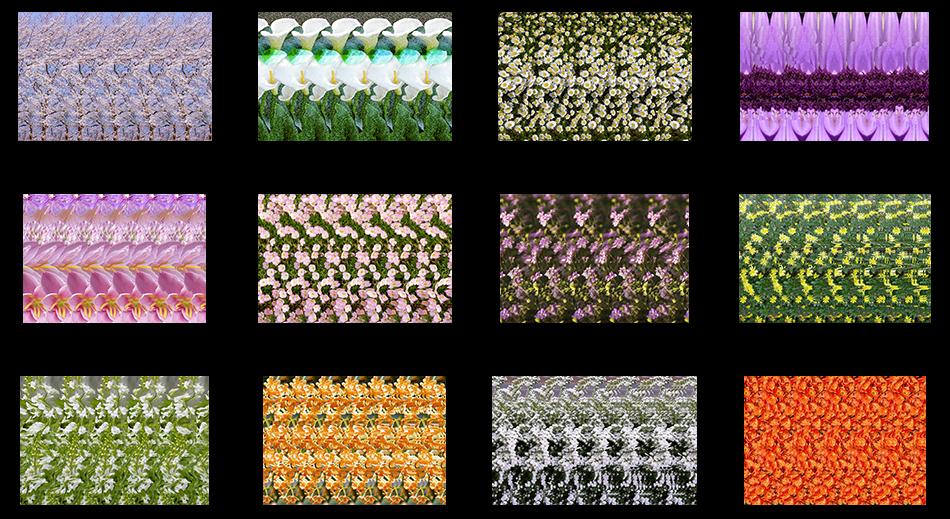 3D stereogram